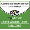 TripAdvisor Excellence 2015